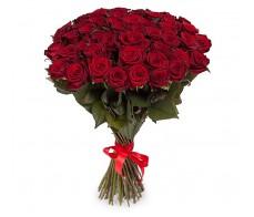 51 роза Эксплорер 70 см