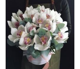 Белые орхидеи в коробке.