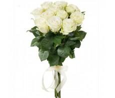 Модиаль (70см)11 роз